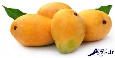 میوه های ممنوع دوران بارداری