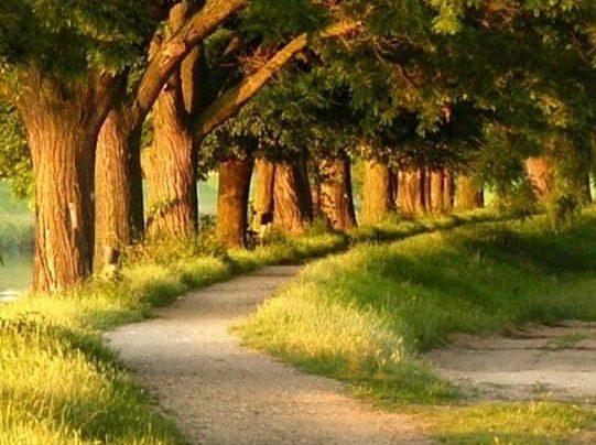 عکس منظره زیبا در طبیعت