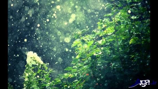 عکس های باران زیبا و تماشایی