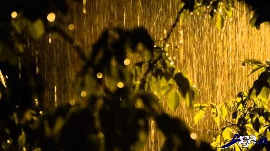 زیباترین عکس های باران