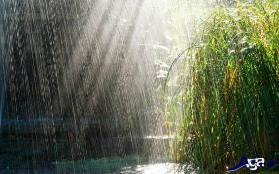 تصاویر باران