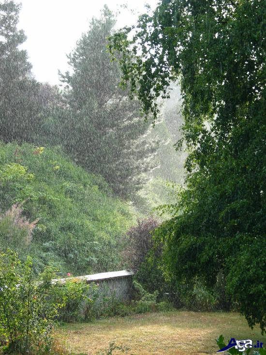 عکس های زیبای باران