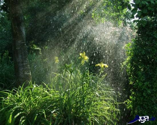 عکس های طبیعت بارانی