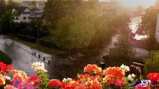 عکس های باران بسیار زیبا