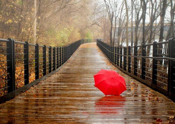 عکس های باران زیبا در طبیعت