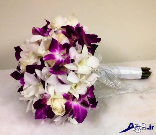 دنیای زیبا و شاد گلهای طبیعی