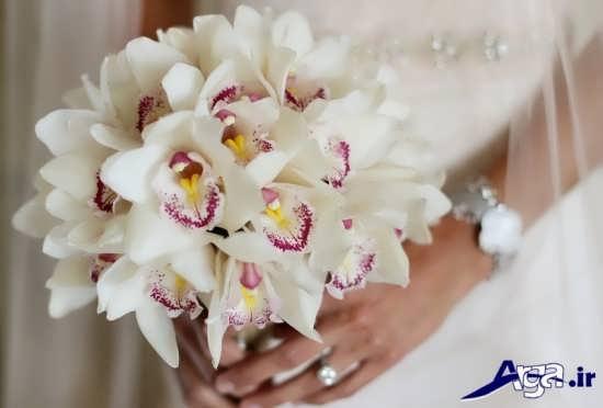 گلهای زیبای ارکیده برای تزیین دسته گل عروس