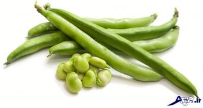 لوبیا سبز و خواص آن