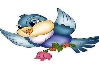 نقاشی کبوتر با انواع رنگ آمیزی های زیبا و جالب