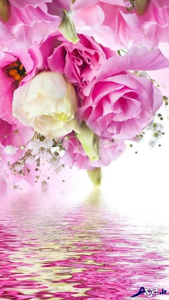 گل رز صورتی به صورت آویز