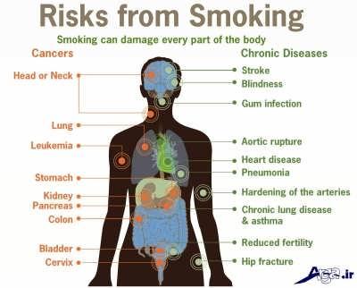 تاثیر سیگار بر روی بدن