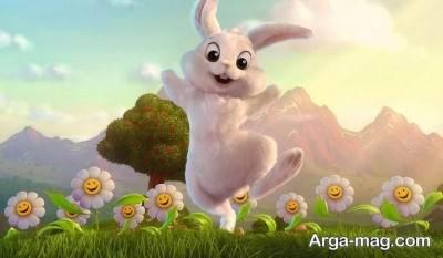 داستان خرگوش و چشمه سحرآمیز