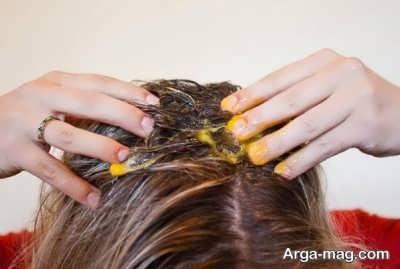 تقویت موی سر با تخم مرغ