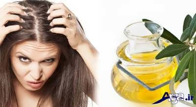 رشد موی سر با روغن زیتون