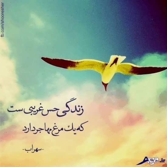 زیباترین عکس نوشته های سهراب سپهری
