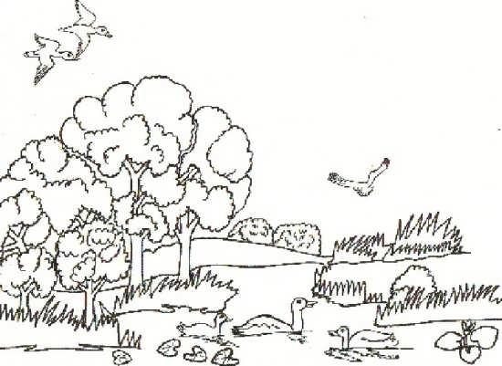 نقاشی کودکانه طبیعت با انواع رنگ آمیزی
