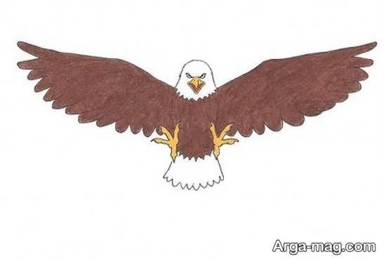 نقاشیهای عقاب