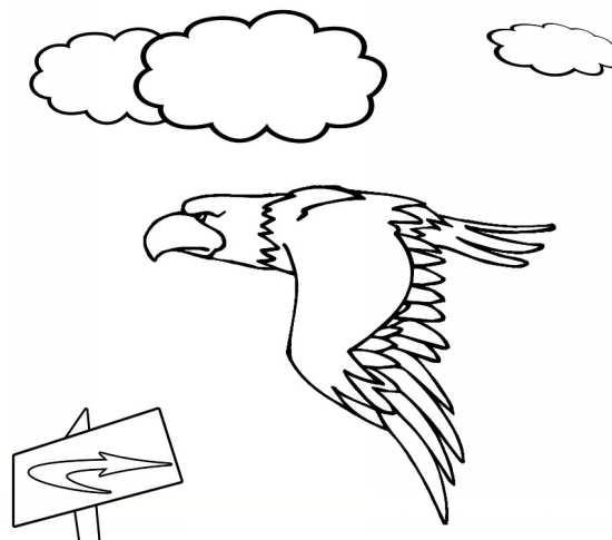 نقاشی آسمان و عقاب