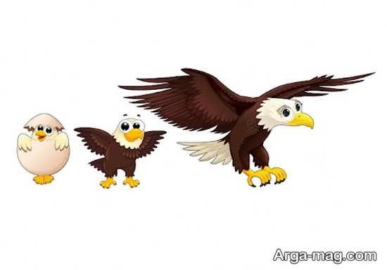 نقاشیهای عقاب کودکانه