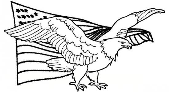 نقاشی زیبا و جذاب عقاب برای بچه ها