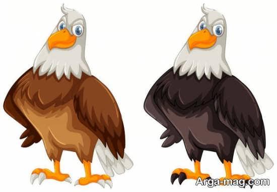 انواع رنگ آمیزی عقاب