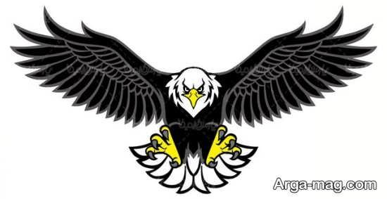 نقاشیهای کارتونی عقاب