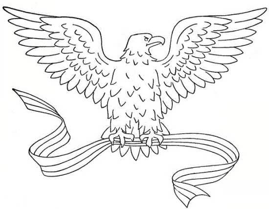 رنگ آمیزی جالب و جذاب عقاب