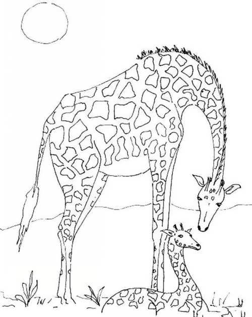 نقاشی زرافه برای بچه ها