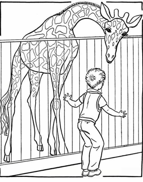 نقاشی زرافه در باغ وحش