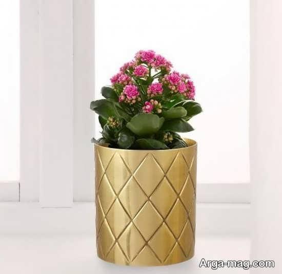 گلدان های رومیزی جدید