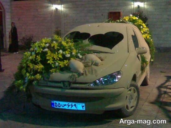 ماشین عروس 206 شیک و جذاب