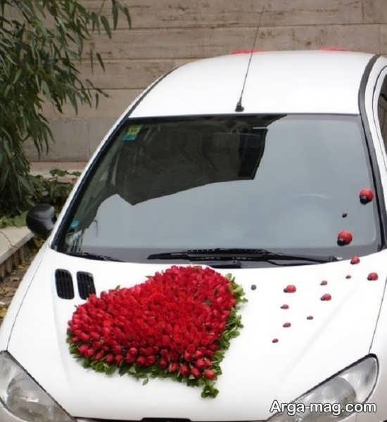 تزیین ماشین عروس پژو 206 با کفشدوزک و گل