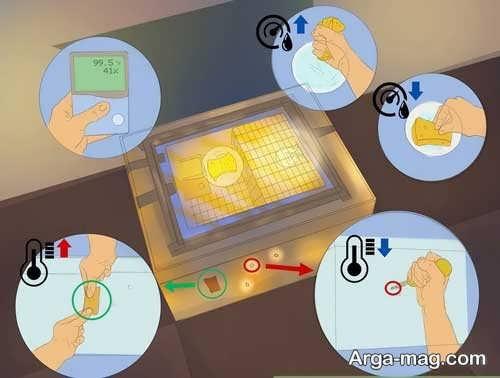 روش ساختن دستگاه جوجه کشی در خانه