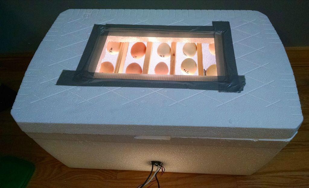 آموزش ساخت دستگاه جوجه کشی خانگی به صورت تصویری و مرحله به