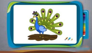 نقاشی طاووس برای رنگ آمیزی