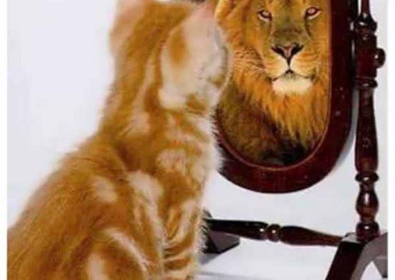اعتماد به نفس کاذب چیست و چگونه با آن مقابله کنیم