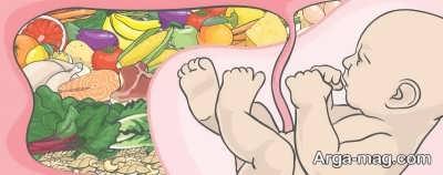 تغذیه در ماه اول بارداری و ارتباط آن با سلامت جنین