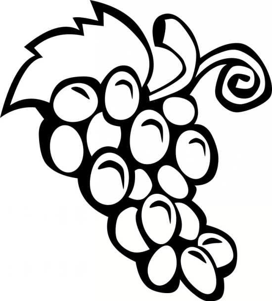 نقاشی انگور