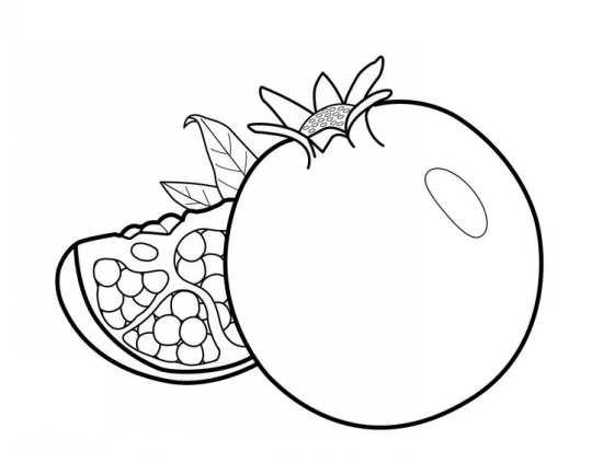 نقاشی انار