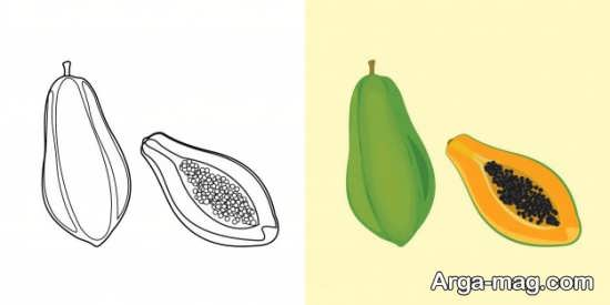 نقاشی میوه و رنگ آمیزی آن