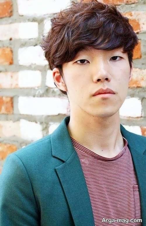 مدل مو کره ای