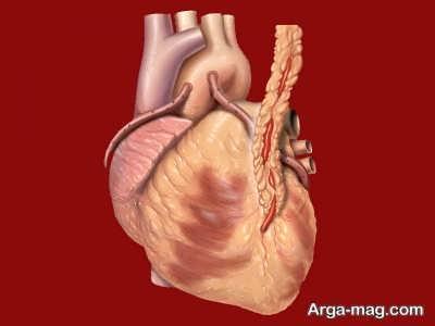 راه های تشخیص نارسایی قلبی