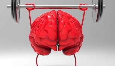 تقویت حافظه کوتاه مدت