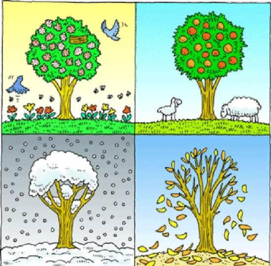 چهار فصل چگونه بوجود می آید