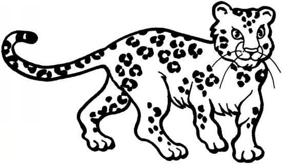 نقاشی پلنگ
