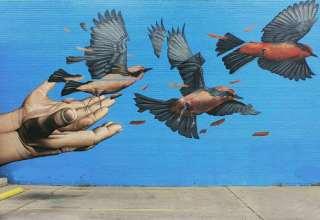 طرح های زیبا نقاشی دیواری