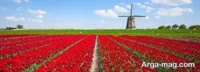 هر آنچه لازم است از گرفتن ویزای هلند بدانید
