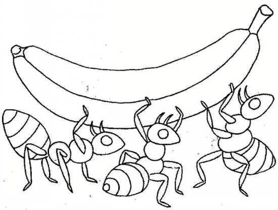نقاشی مورچه و موز