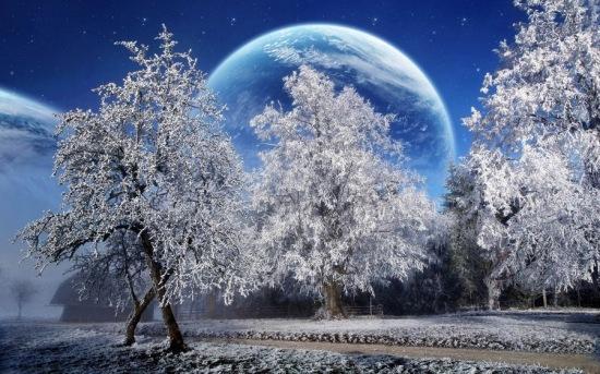 عکس پروفایل درخت و ماه