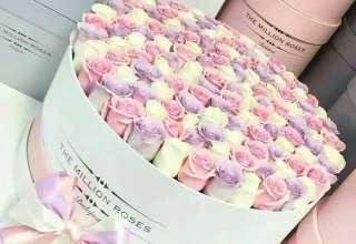 تزئین گل داخل جعبه با طرح خاص